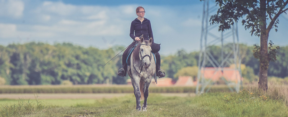 Which head and neck positions are stressful for your horse?