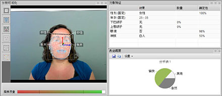 FaceReader 7.1 - Chinese user interface
