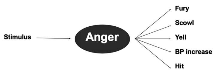 Basic emotion theory