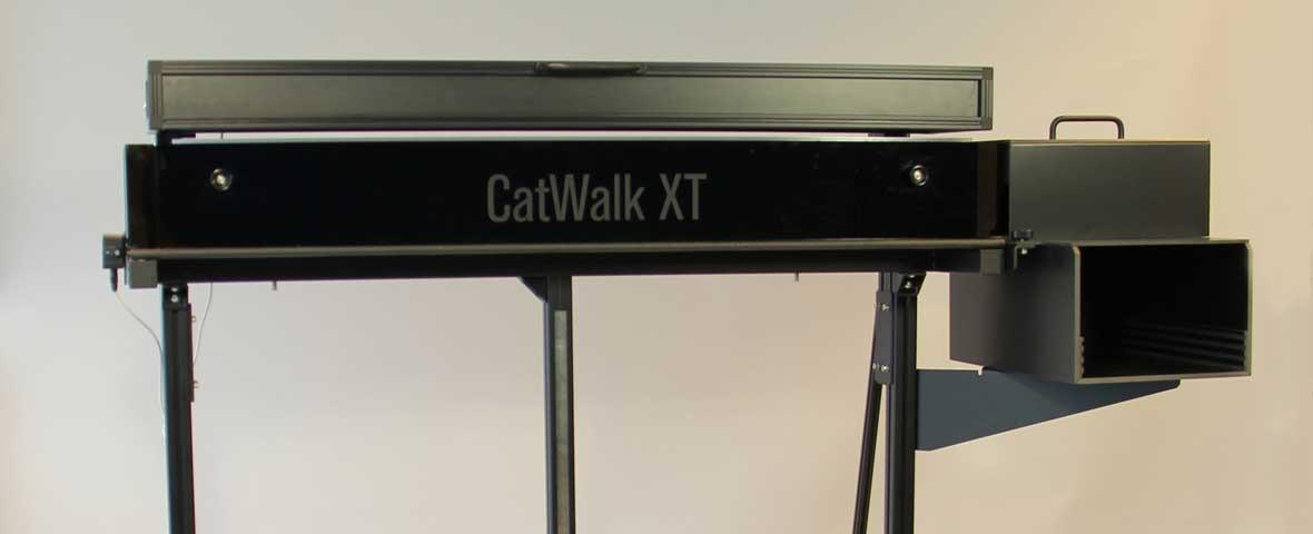 CatWalk XT