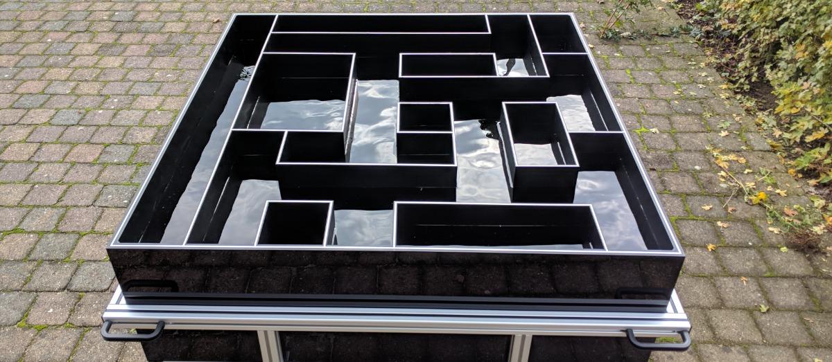 Cincinnati Water Maze Noldus