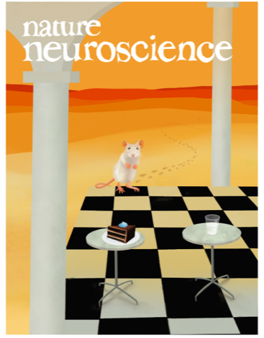 cover nature neuroscience