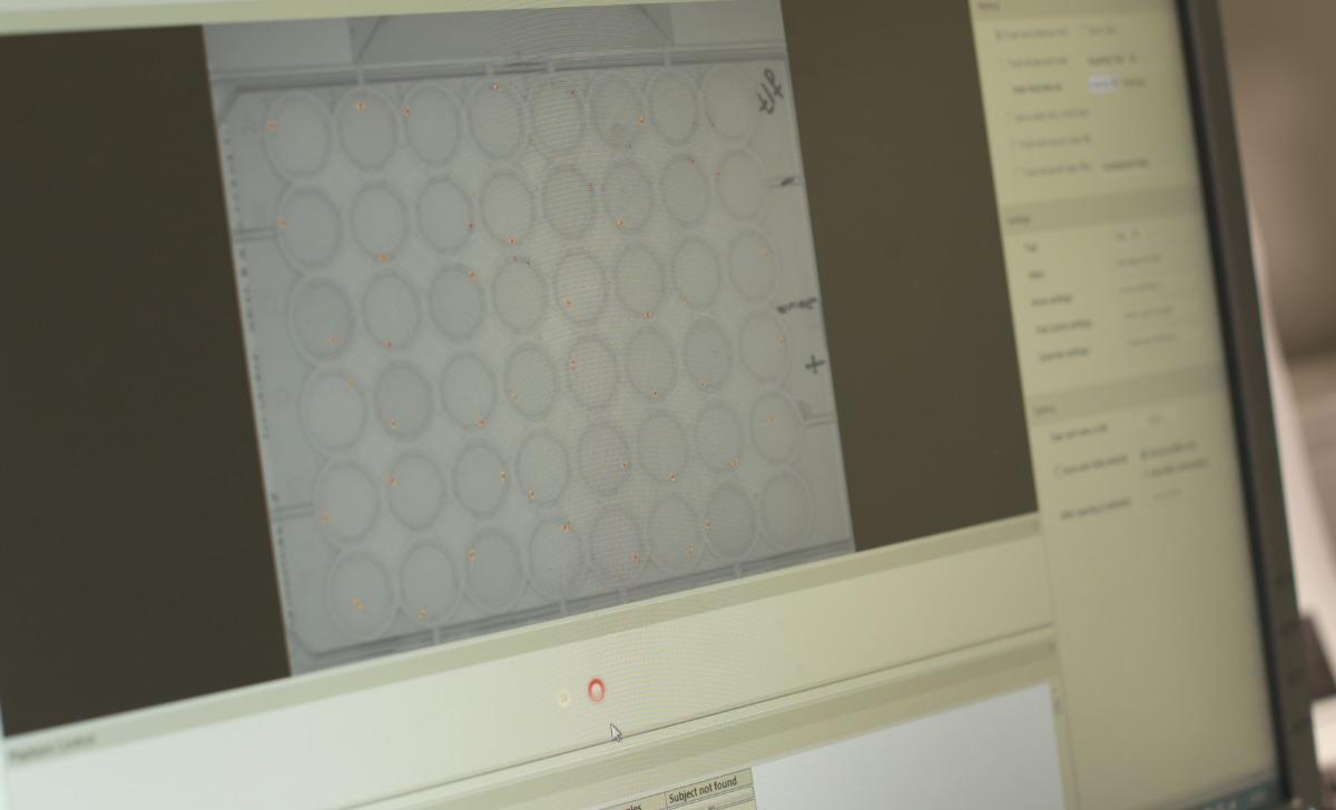 css ruud van den bos zebrafish daniovision ethovision screenshot software