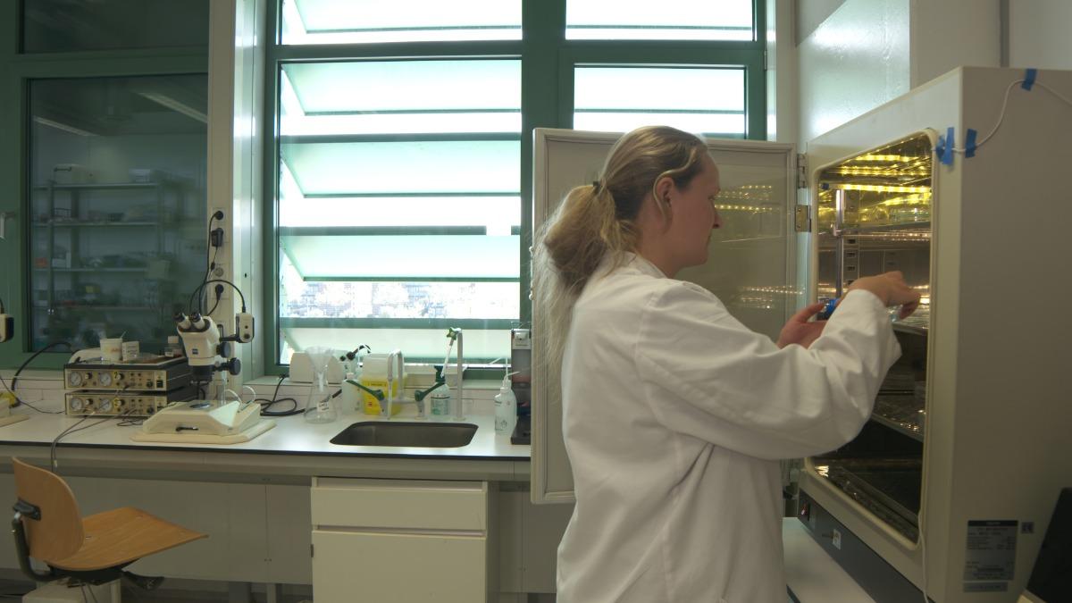 css ruud van den bos zebrafish lab female researcher