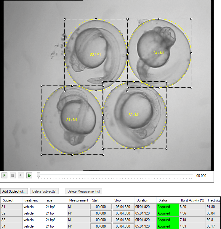 DanioScope screenshot larvae