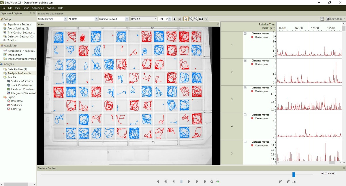 daniovision-ethovision-visualization-two-groups