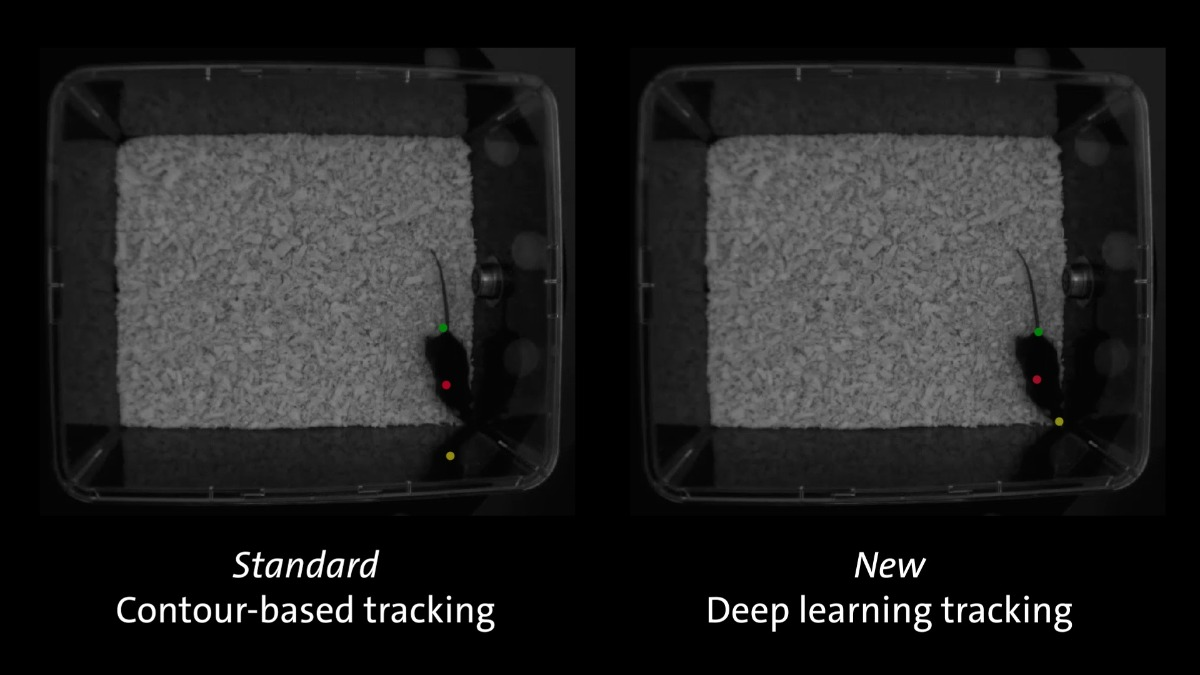 ethovision deep learning dark spot