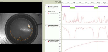 ethovision physiology integrated visualization