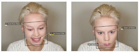 FaceReader screenshot study Lowe et al