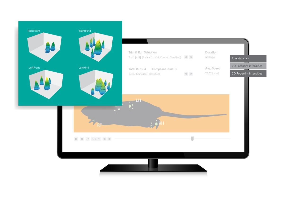 product-visualization-catwalk-xt
