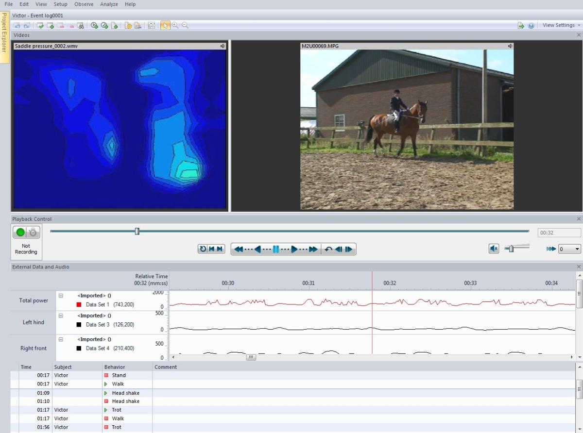 Screenshot The Observer XT data integration visualization horse saddle pressure