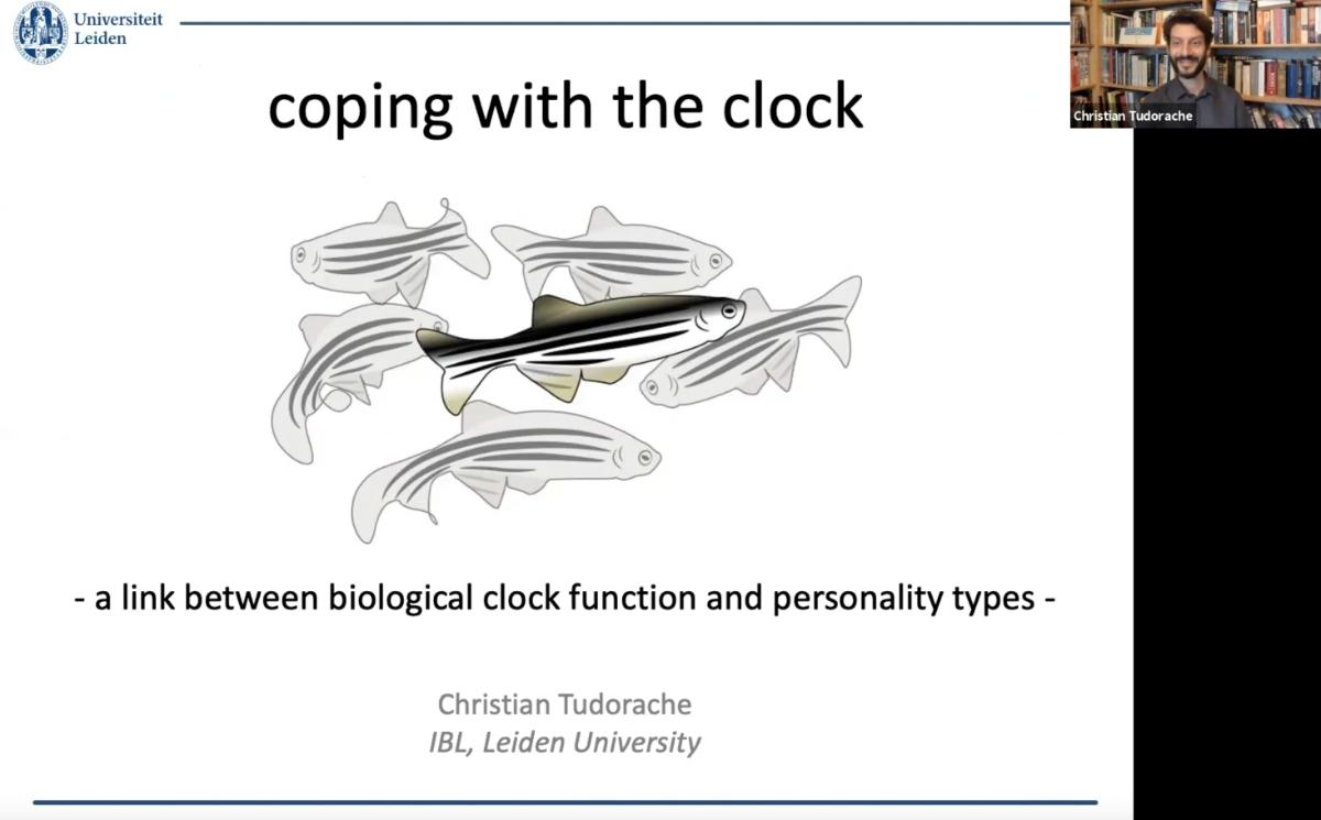 screenshot webinar zebrafish research