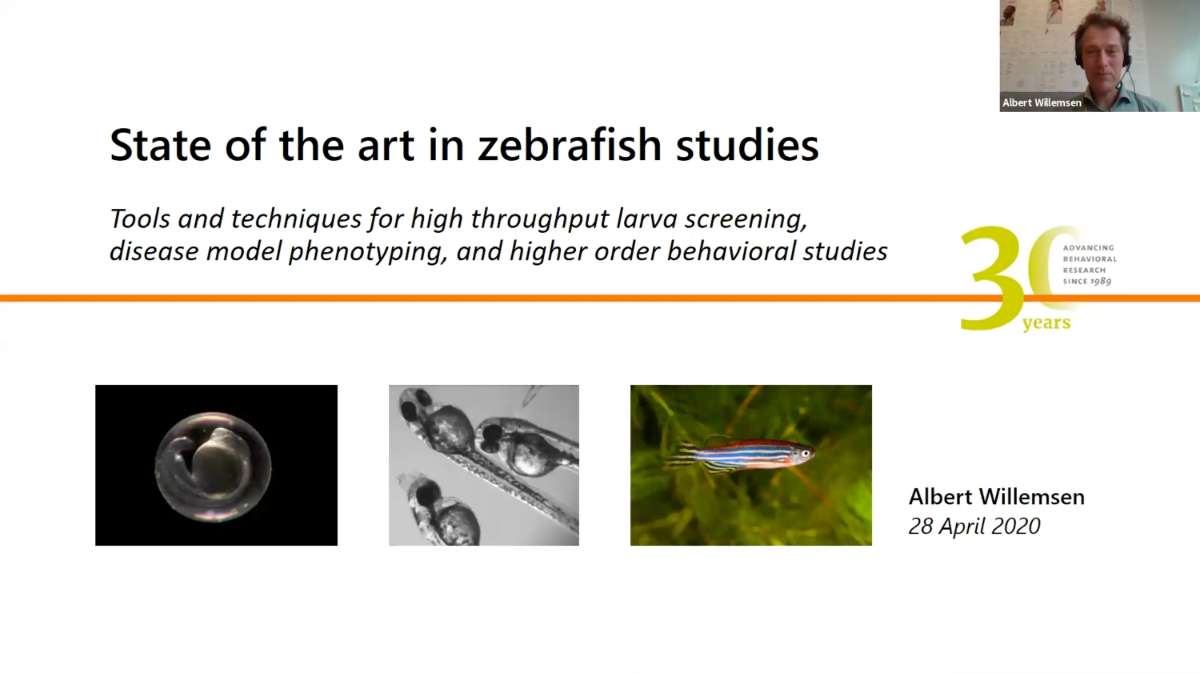 screenshot webinar zebrafish studies