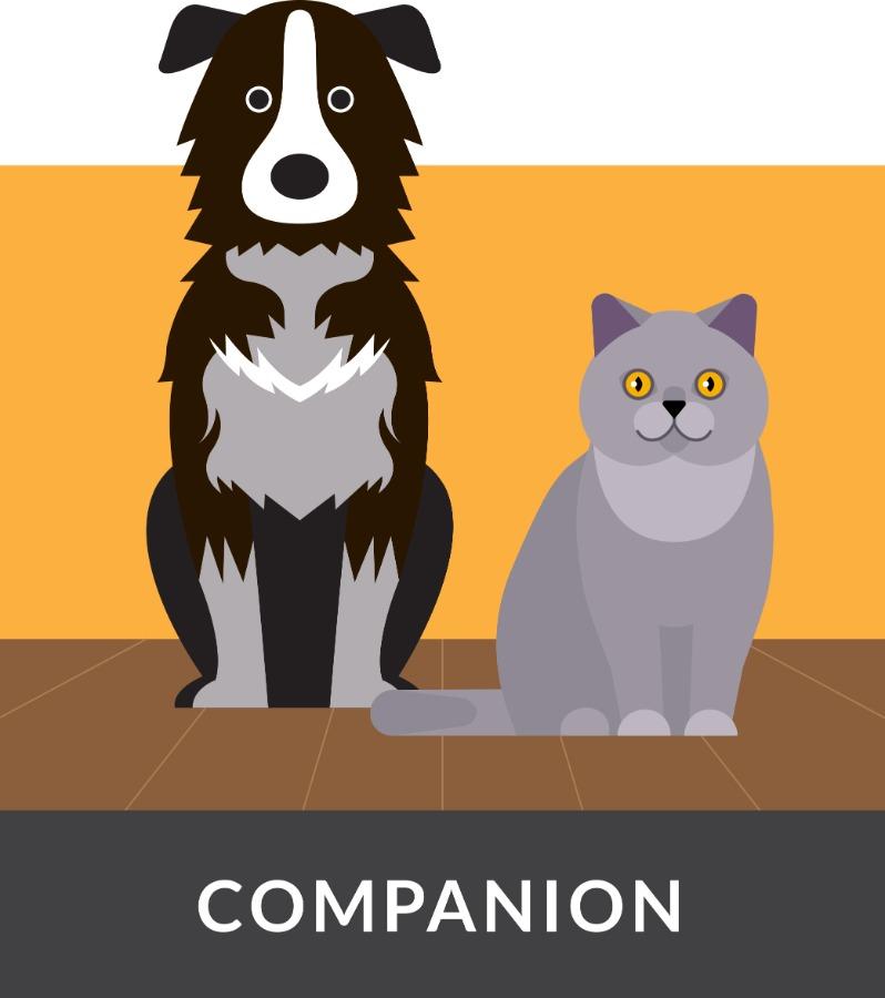 tracklab companion icon