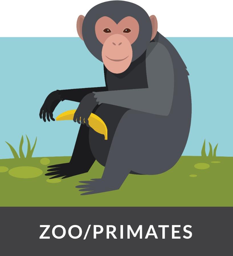 tracklab zoo icon