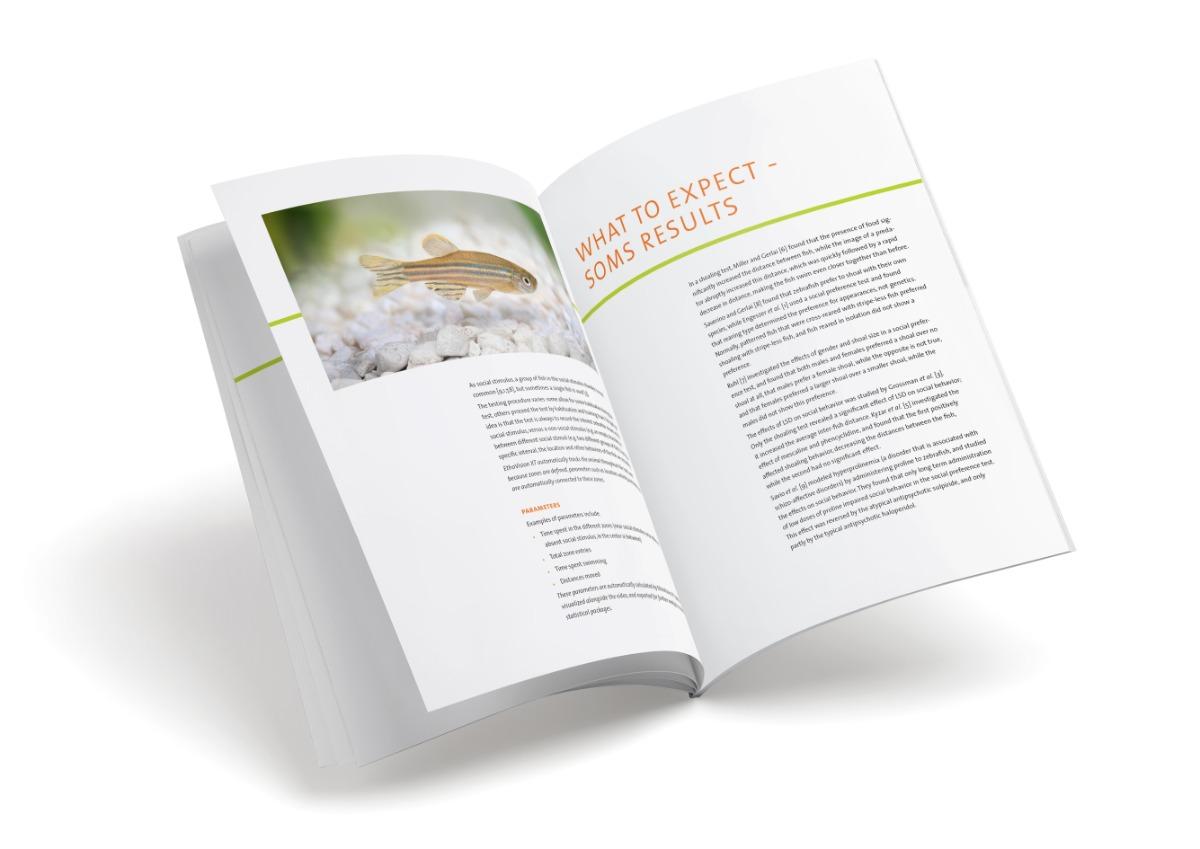 white paper social behavior zebrafish