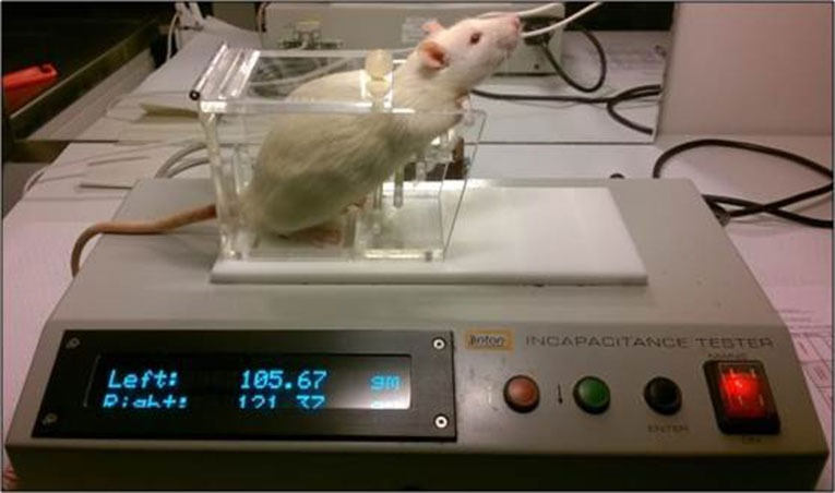 White rat lintons incapacitance tester