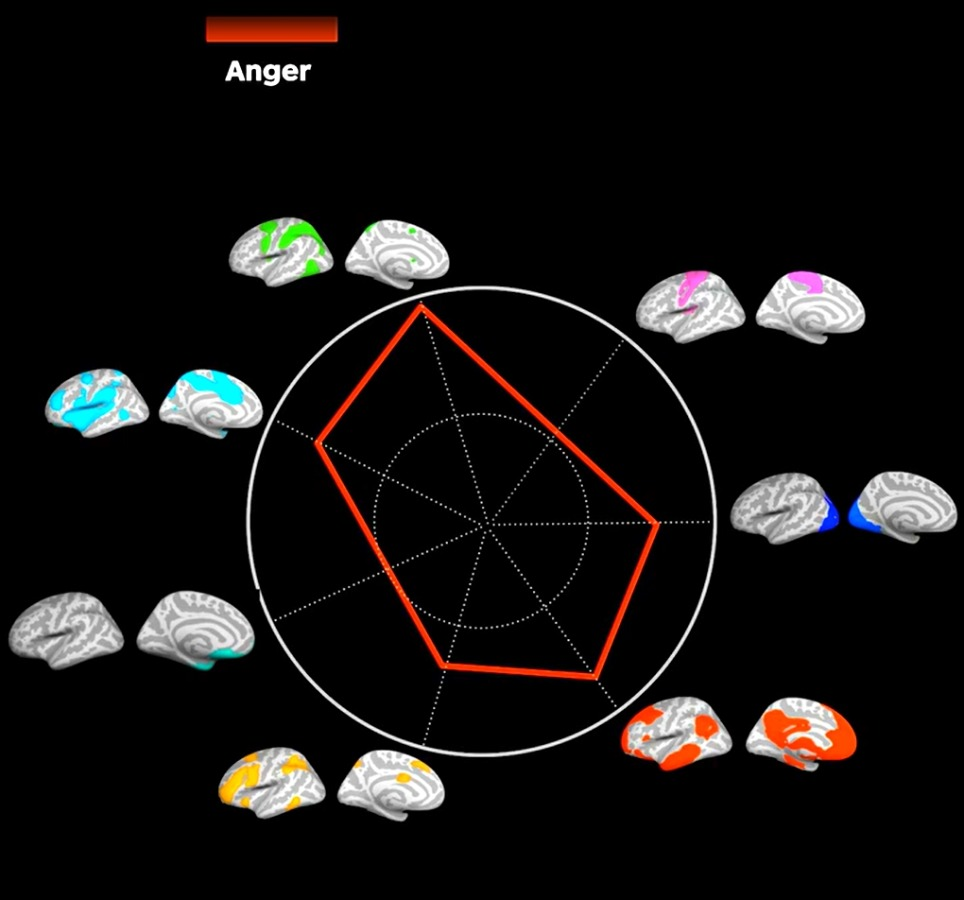 Workshop emotions anger average recipe