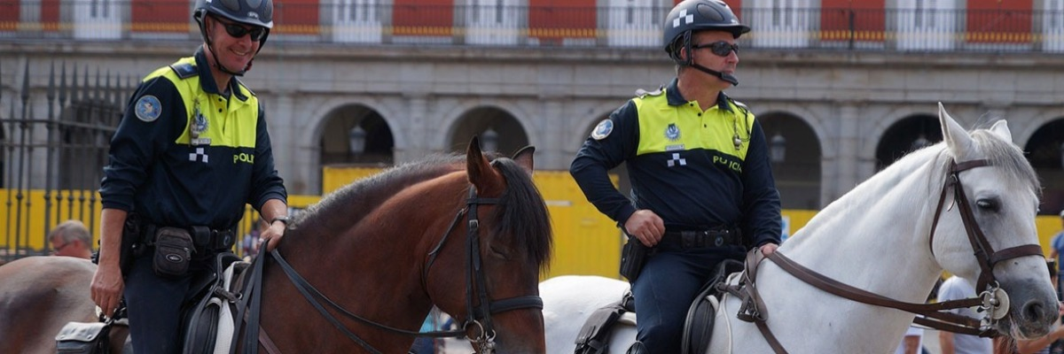 Behavioral tests to select police horses