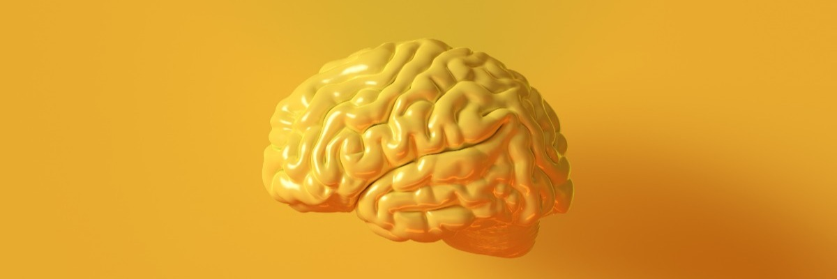 Cognitive neuroscience: the basics
