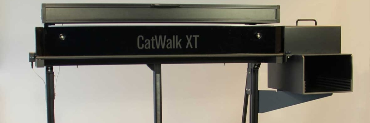 Gait analysis at the PSDL using CatWalk