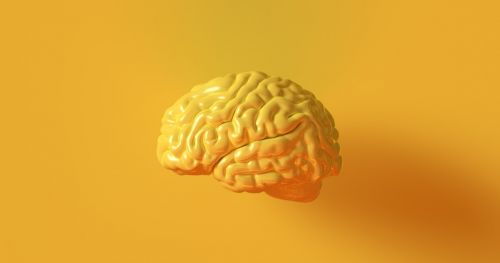 cognitive-neuroscience-basics