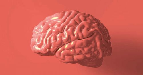 cognitive-neuroscience-emotions