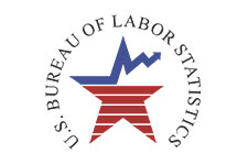 Bureau Statistics Logo
