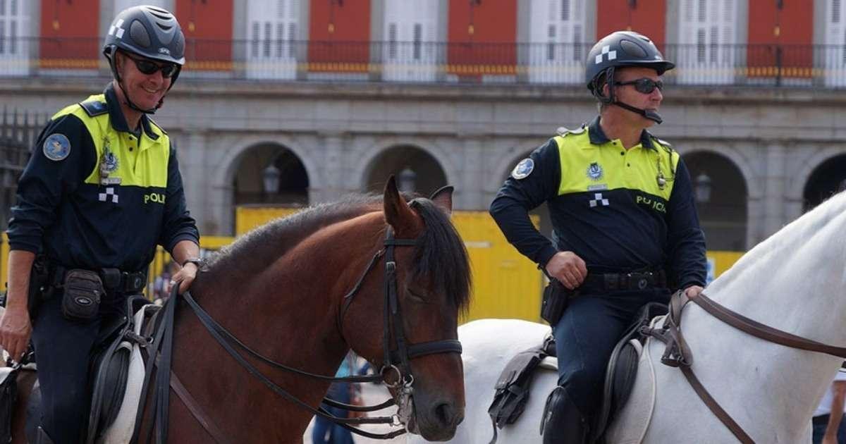 behavioral-tests-select-police-horses