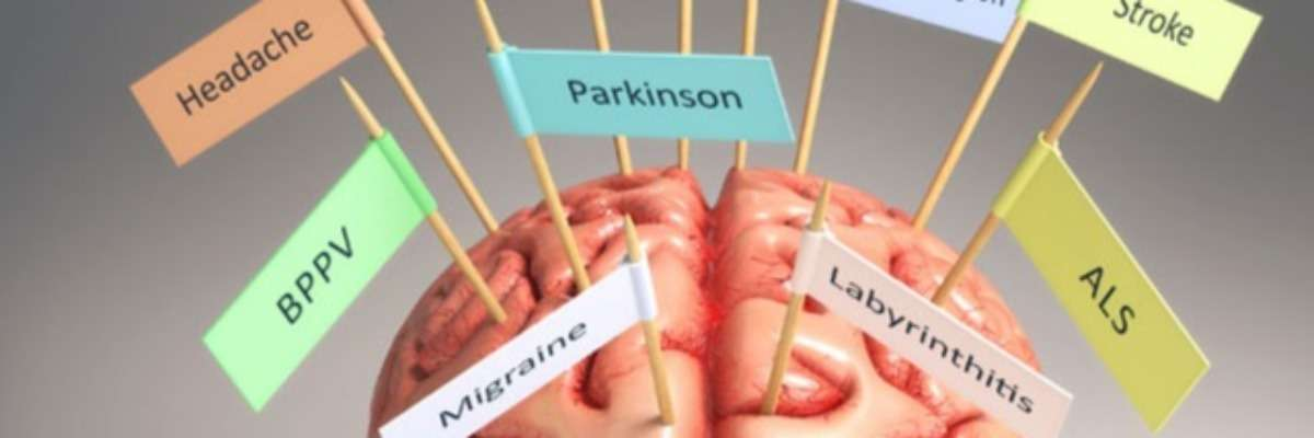 5 blog posts about brain research