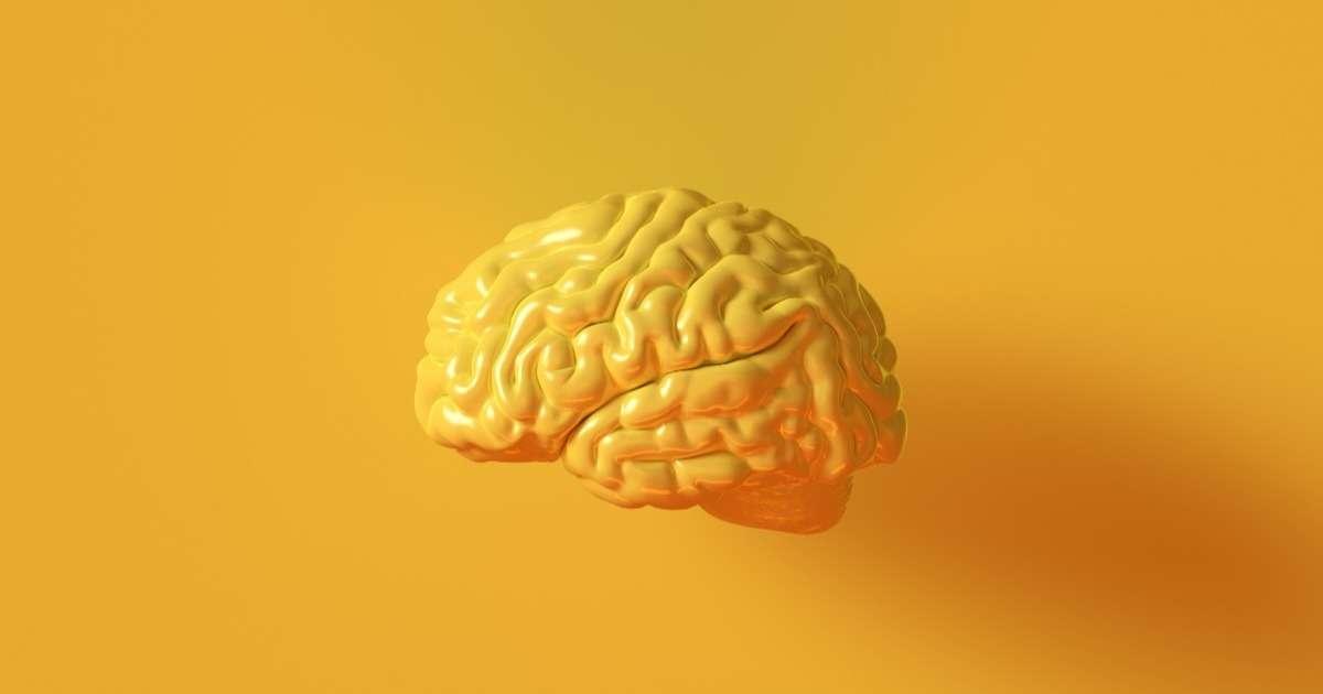 cognitive-neuroscience-basics