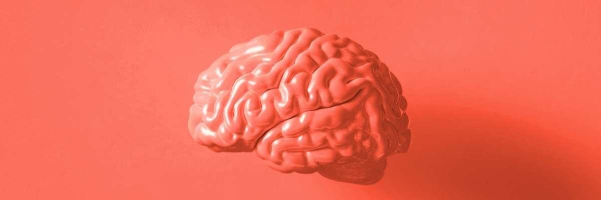 Cognitive neuroscience: Emotions