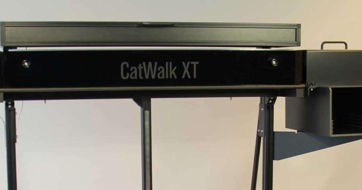 gait-analysis-catwalk-xt