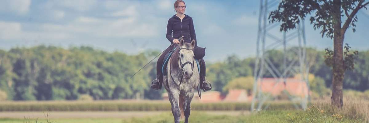Which head and neck positions are stressful for your horse during lunging?